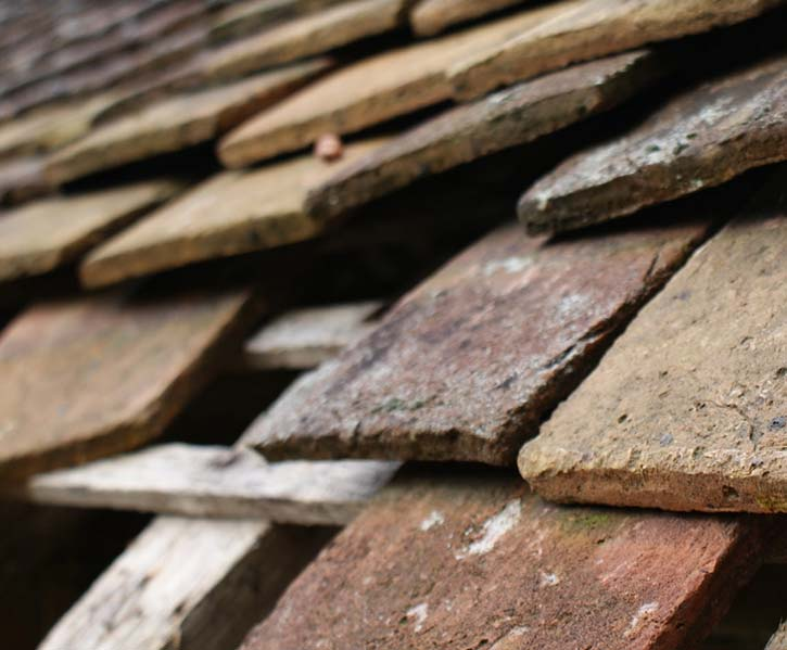 missing shingles are a sign for a mandatory roof repair or replacement