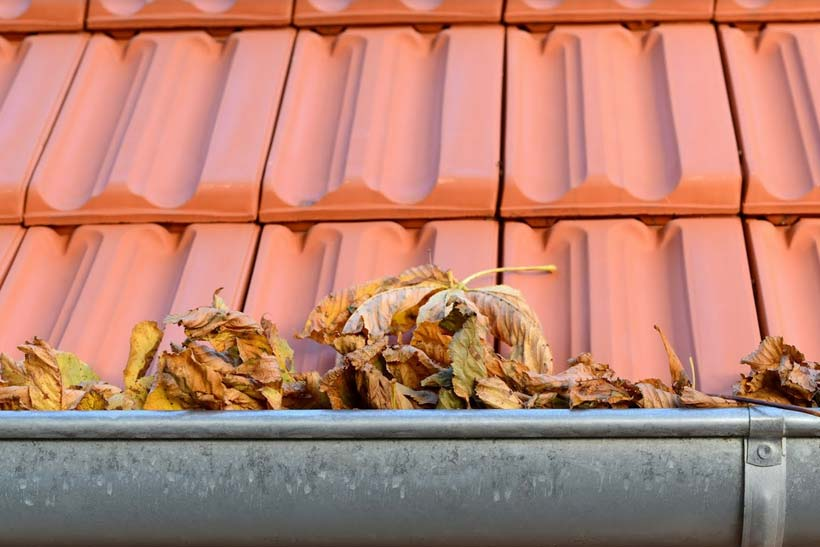 gutter full of leaves needs cleaning